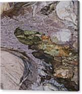 Morning Ice Canvas Print