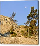 Morning Mammoth Moon Canvas Print