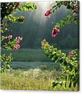 Morning Marsh Canvas Print
