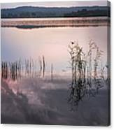 Morning Nocturne. Ladoga Lake. Northern Russia  Canvas Print