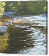 Morning On The Little River Canvas Print