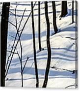 Morning Peace Canvas Print