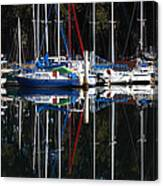 Morning Reflections Canvas Print