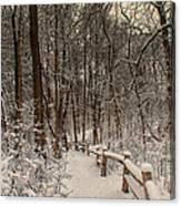 Morning Snow Path Canvas Print