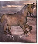 Morning Spirit Canvas Print