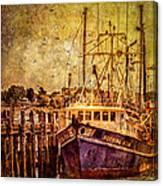Morning Star Canvas Print