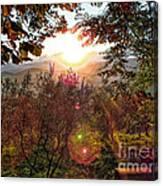 Morning Sunbeams Canvas Print