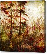 Morning Sunrise Burst Of Color Canvas Print