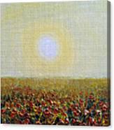 Morning Sunshine Three Canvas Print