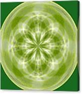 Morphed Art Globe 27 Canvas Print