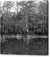 Morrison Springs Drought Canvas Print