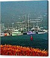 Morro Bay At A Distance Canvas Print