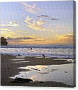 Morro Rock Park Canvas Print