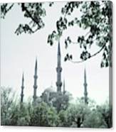 Mosque Behind Trees In Turkey Canvas Print