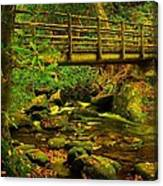 Moss Bridge Canvas Print