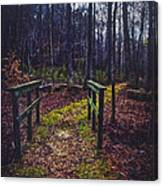 Moss Covered Path Canvas Print