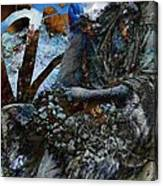 Moss Veils And Illuminated  Canvas Print