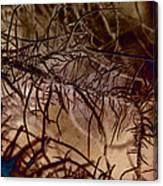 Mossier 4 Canvas Print