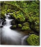 Mossy Arch Cascade Canvas Print
