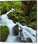 Mossy Creek Cascade Canvas Print