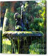Mossy Fountain Canvas Print