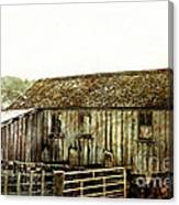 Mossy Shed Canvas Print