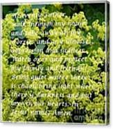 Most Powerful Prayer With Ladies Mantle Canvas Print