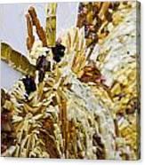 Moth A Million Pieces Canvas Print