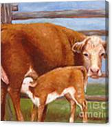 Mother And Baby Cow Canvas Print