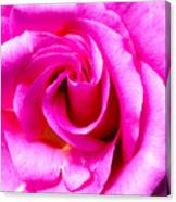 Mother's Day Rose Blank Canvas Print