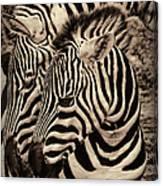 Mothers Embrace Canvas Print