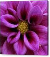 Mothers Flowers Canvas Print