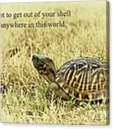 Motivating A Turtle Canvas Print