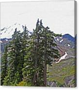 Mount Baker Area Wilderness Canvas Print