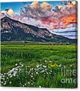 Mount Crested Butte Summer Sunset Canvas Print
