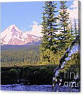 Mount Hood From Buzzard Point Canvas Print