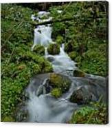 Mount Rainier Brook Canvas Print