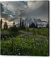 Mount Rainier Meadows Storm Brewing Canvas Print
