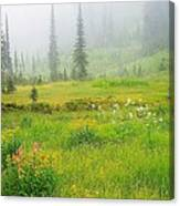 Mount Revelstoke National Park British Columbia Canada Canvas Print