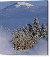 Mount Spokane Canvas Print