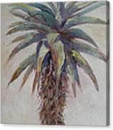 Mountain Aloe Canvas Print