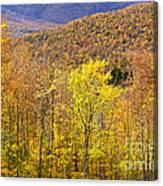 Mountain Autumn Canvas Print