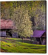 Mountain Barns In North Carolina Canvas Print