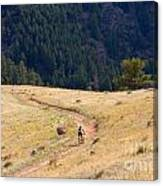 Mountain Biker Canvas Print