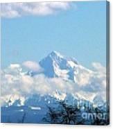 Mountain Fluff Canvas Print