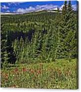 Mountain Meadow Scene Canvas Print