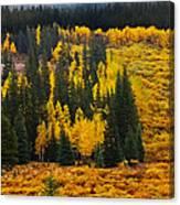 Mountain Meadows Canvas Print