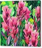 Mountain Meadows' Paintbrush Canvas Print
