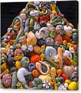 Mountain Of Gourds And Pumpkins Canvas Print