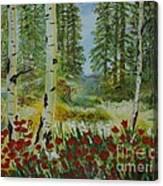 Mountain Poppies Canvas Print